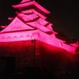 Pinkkokurajo